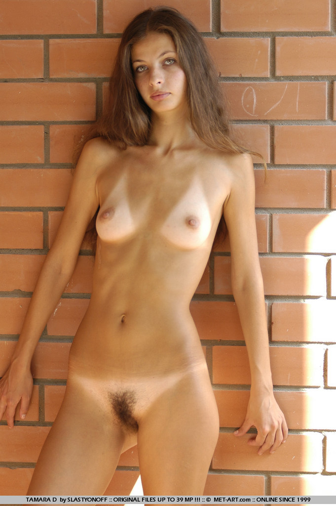 Skinny tanned beauty showing hairy pussy