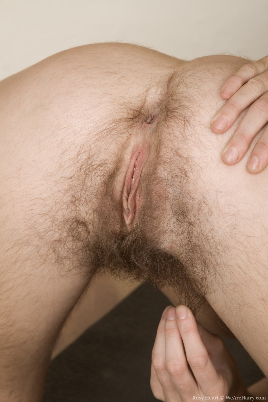 Hairy Teen Mirror Masturbation