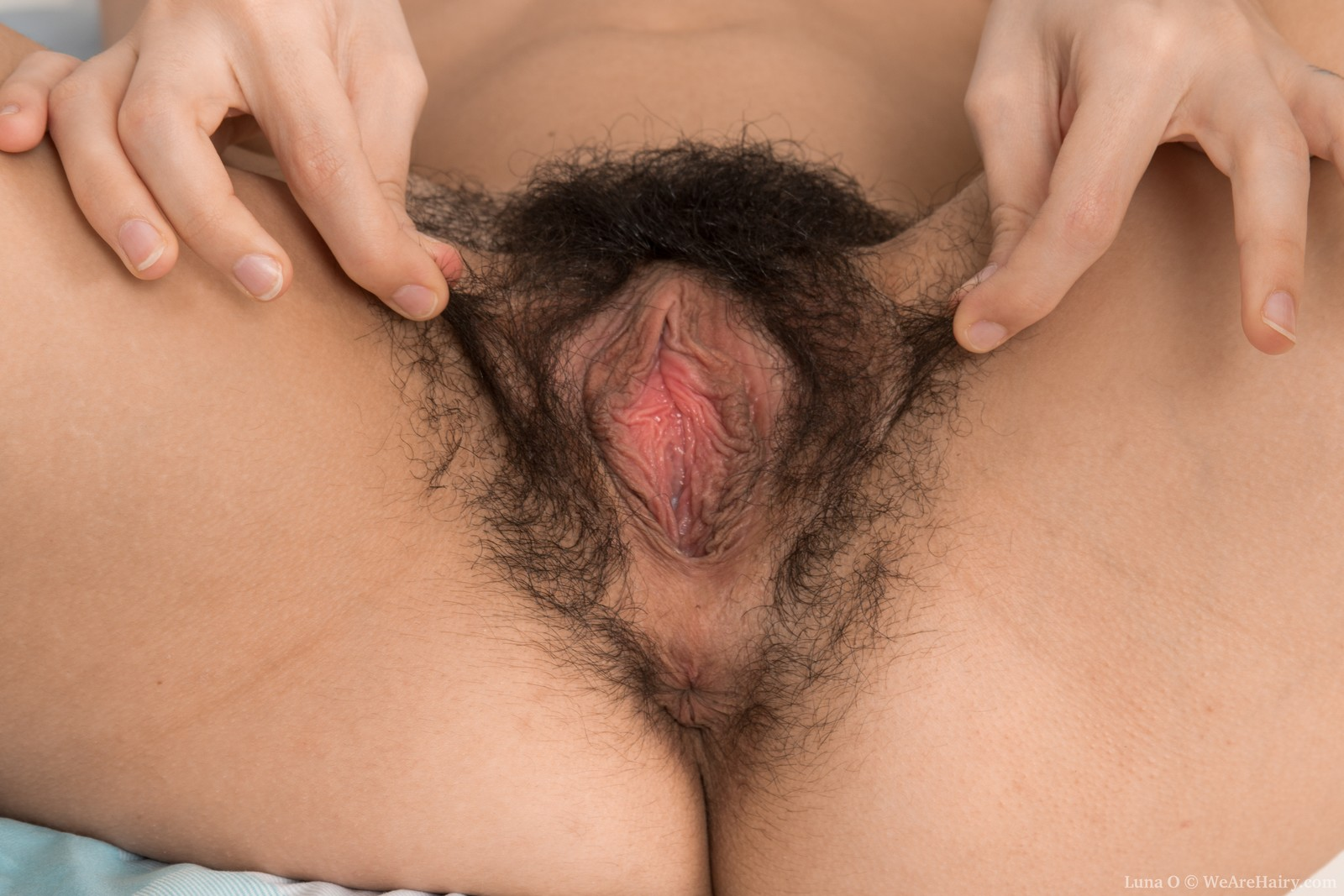 Are not Hairy italian women porn think, that