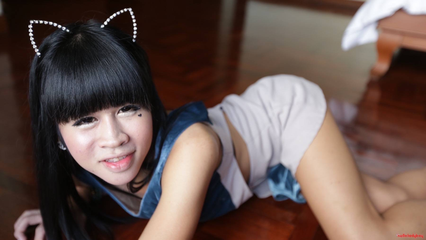 Hairy Thai ladyboy gets naughty