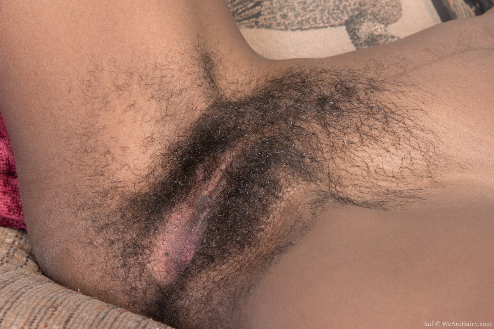 Young bald pussy hole