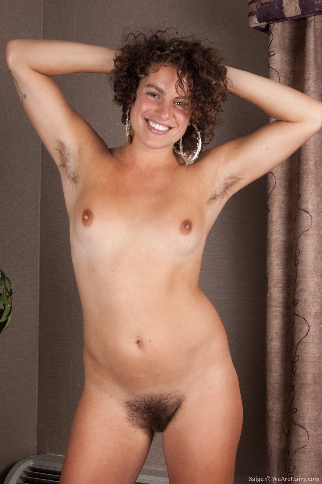 hairy movies hirsute pictures and unlimited downloads of hairy
